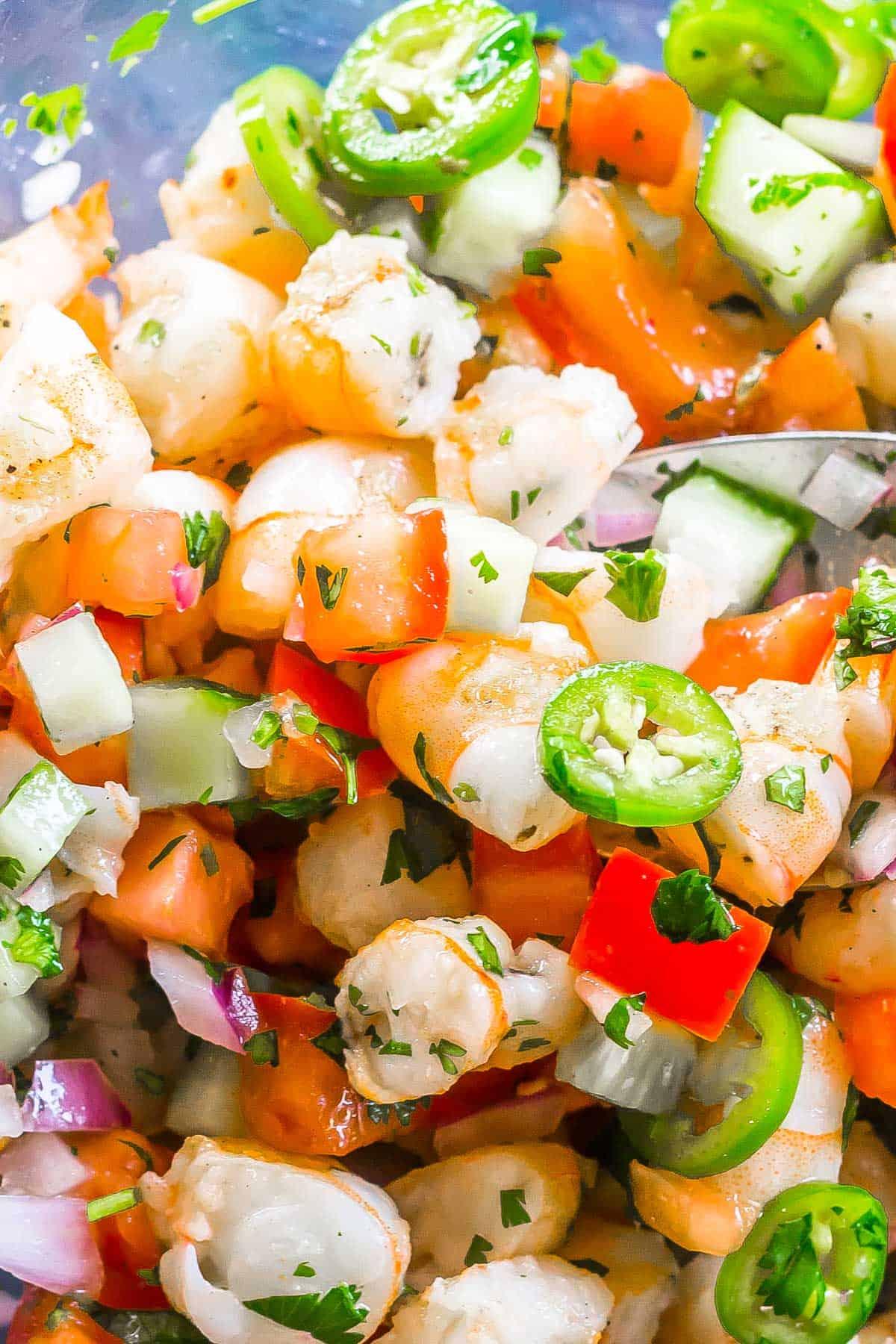 shrimp salsa closeup image