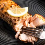 cooked salmon being flaked with fork